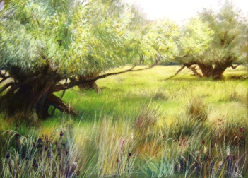 August in the Watermeadows, Old Linslade 2014. Joanna Stone. Pastel