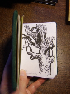 Sessile Oak, Joanna Stone 2015, brushpen.